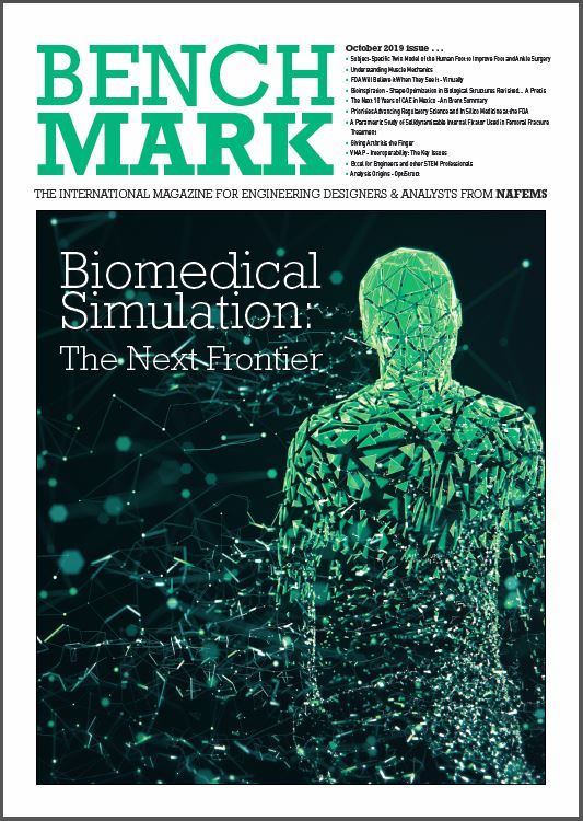 Biomedical Simulation: The Next Frontier